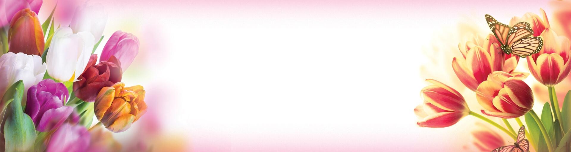 rudua_banner_1920x512_56d59e06affc3.jpg