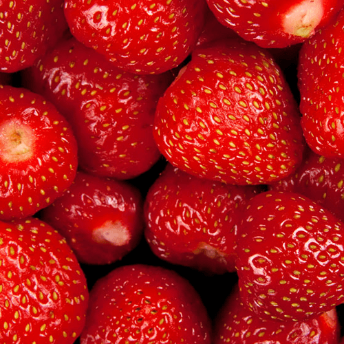 Strawberries HoReCa ТМ «Rud»