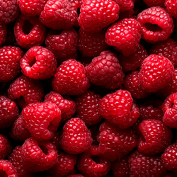 Raspberries HoReCa
