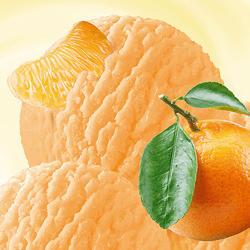 """THE TANGERINE"" SORBET HoReCa"