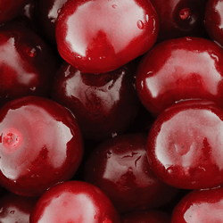 Pitted Cherries HoReCa